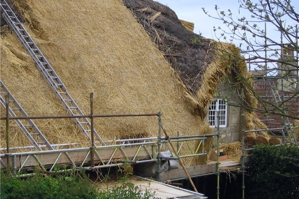 Thatching Stage 3 - Feature Work