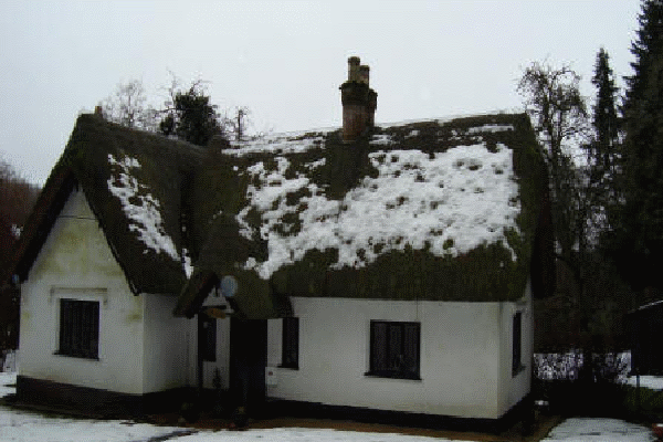 Thatched roof Pitton (before)