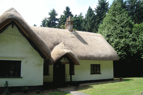 Thatched roof Pitton