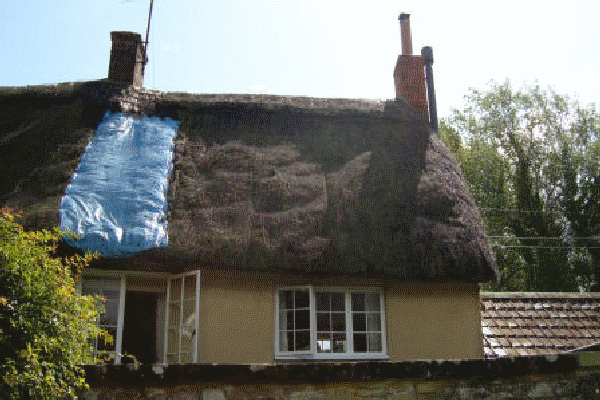 Thatched roof Wylye